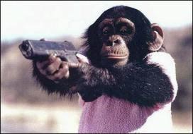 chimpanzee_glock.jpg